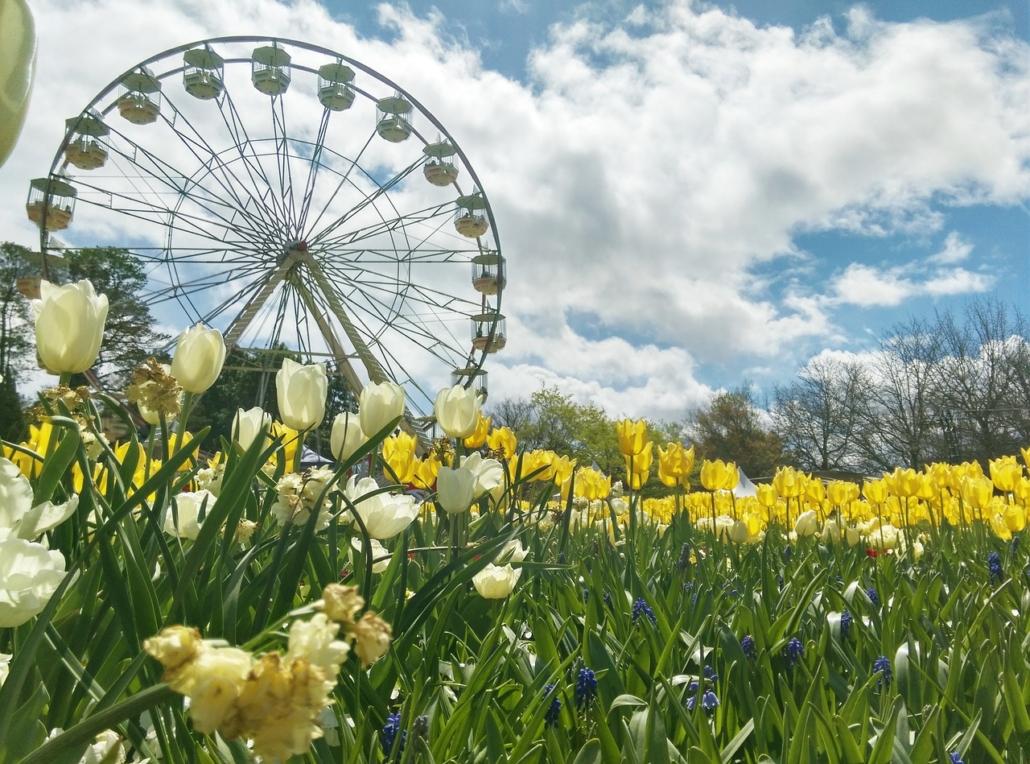 Die beste Reisezeit für Canberra Australien