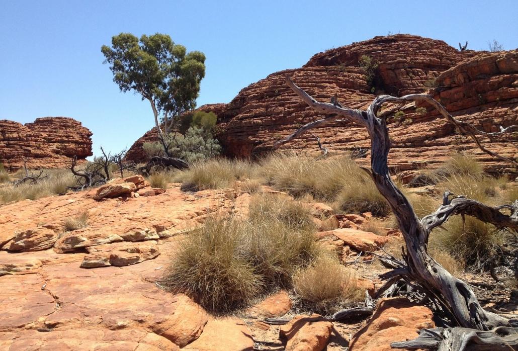 Australiens spektakuläres Outback Berühmt & berüchtigt