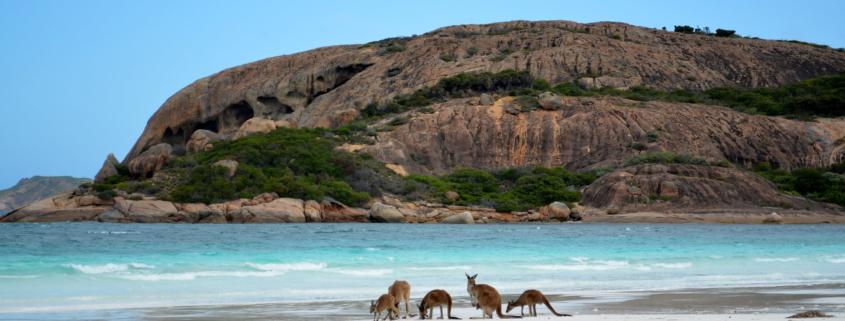 Esperance Vom Goldrausch zum weißesten Strand Australiens Western Australia