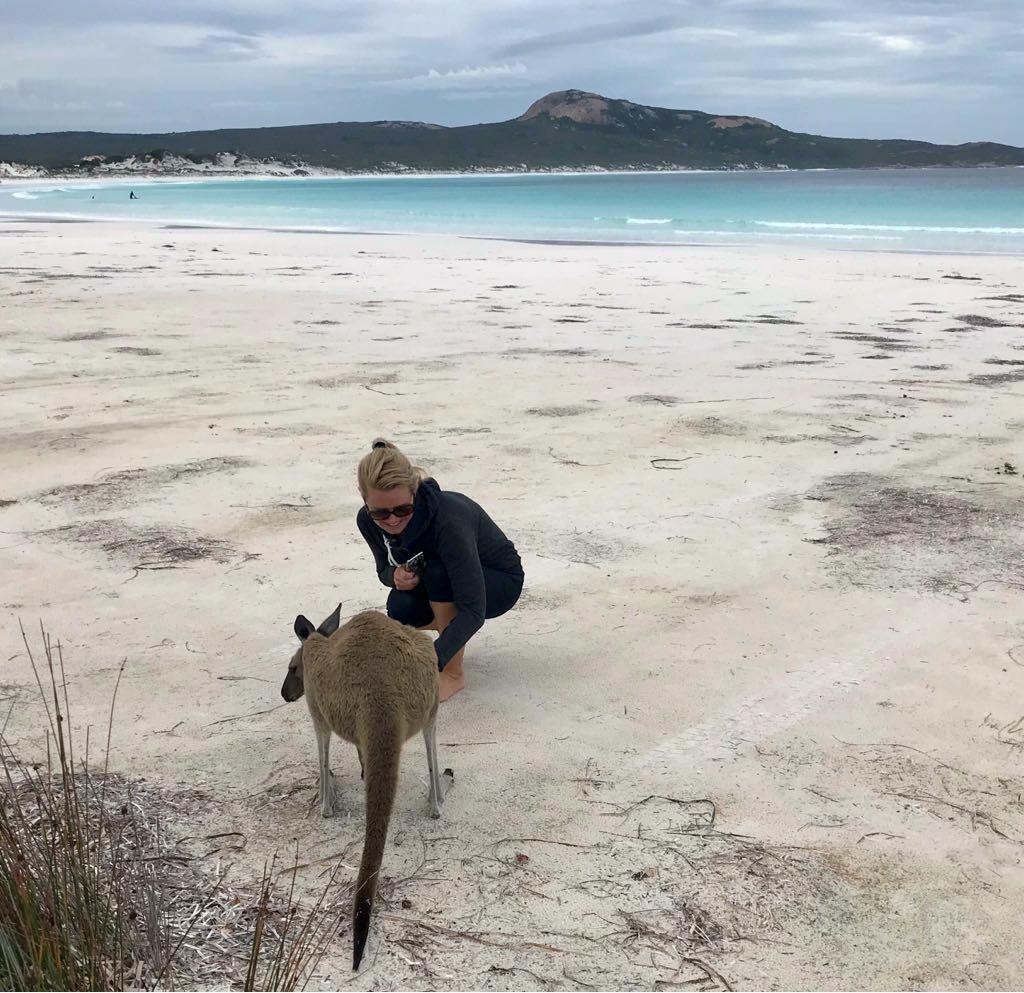 Lucky Bay Kängurus